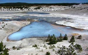 NB - Porcelaine spring