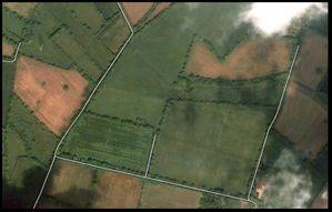 champs-des-fontenils.jpg