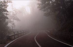 foggy_road205.jpg