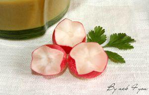soupe radis 3