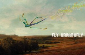 Fly-DragonFly