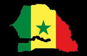 Carte fanion Senegal