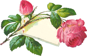 CAJ.SCR.FR.-MUG.1ER-MAI-PU---8.png