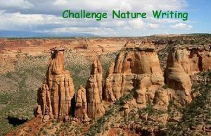 http://img.over-blog.com/300x193/1/93/46/69/images2/logo-naturewriting.jpg