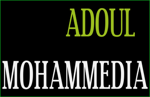 ADOUL-MOHAMMEDIA.png