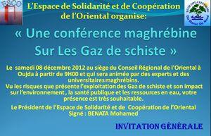 conference-maghrebine-sur-les-gaz-de-schiste.jpg