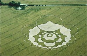 geometrie_issue_des_crop_circles_geometrie20.jpg