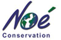 logo Noé