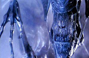 article-aliens-le-retour-2.jpg