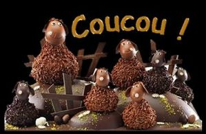 coucou.chocolat.JPG