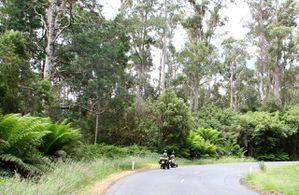 Auf-nach-Tasmanien-9397_2.jpg
