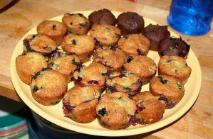 muffins-aux-myrtilles-7960.jpg