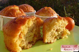 muffinsuzette