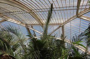 Londres Kew garden palm house (2)