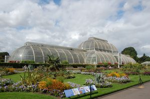 Londres Kew garden palm house