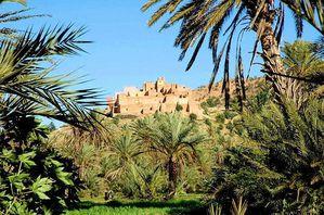 TAROUDANT_plameraie-oasis-de-tiout-taroudant-maroc