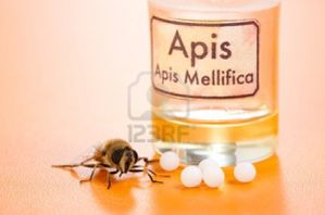 10238670-apis-mellifica-pastillas-homeopaticas-extracto-de-.jpg