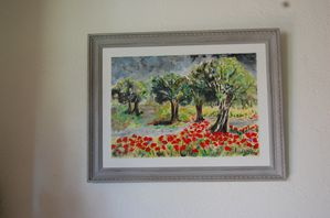 Coquelicots-en-Provence----002.jpg