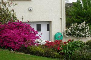 Jardin 7 mai 2012 007