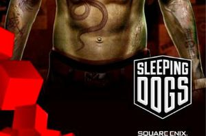 sleepingdogs530