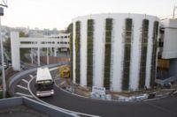 Mur végétal Gare de Perrache-Lyon-Ekopedia 0564