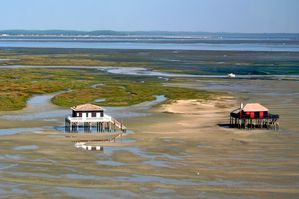 Bassin_d-Arcachon_-_Cabanes_tchanquees.jpg