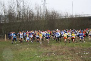 cross-reg2013-280.jpg