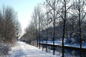 neige 5 2010