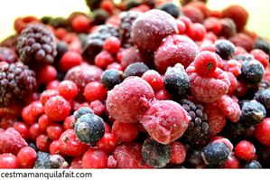 BAVAROIS DE FRUITS ROUGES (13)