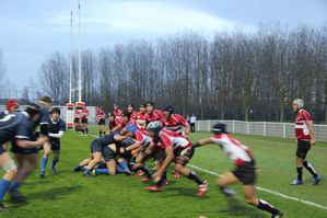 Rugby-Japon-Toulouse.jpg