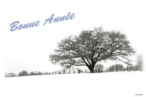 bonne-annee-ad308478-5cc7-41ce-a9cb-c9d31102986a.jpg