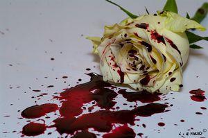 Rose-la-m-.jpg