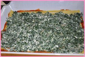 Lasagne-aux-Bettes-du-Jardin 0045