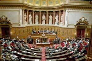 senat.jpg