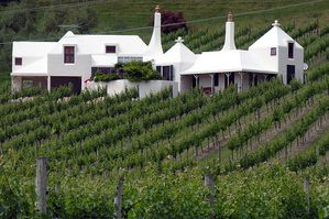 Te Mata vineyard Hawkes Bay