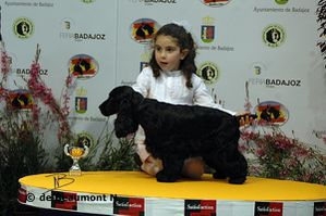 Nerea-junior-handling-podium-2.jpg
