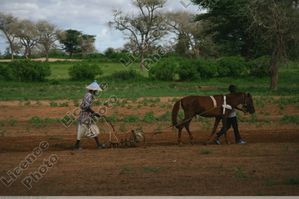 Cultures-Cultivations.jpg