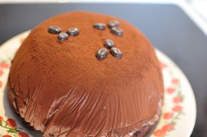 Gateau-glace-cafe 0003 (3)
