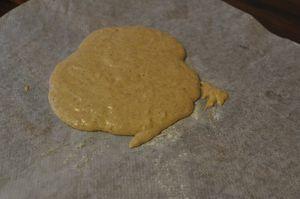 tarte-aux-pommes-autrement 0055