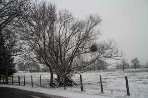 neige janvier 20133