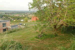 Vue Est : la plaine du Tarn