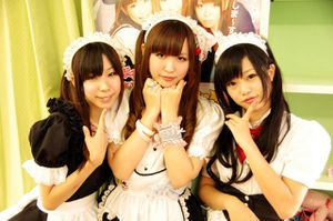 Hello Japan - Maid Girl TRIO
