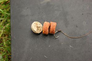 frolic---bouillette-starbaits-calamar.JPG