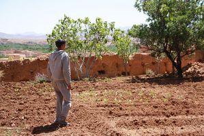Bivouac-vers-Ouarzazate---35-.JPG