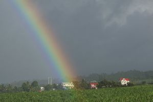 800px-Rainbow_over_the_house_in_the_sugar_cane_fields.JPG