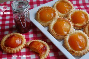 soleils aux abricots