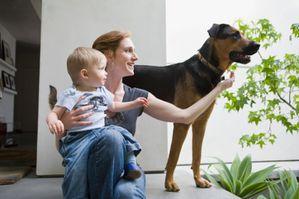 chiens-bebe-113440_XL.jpg