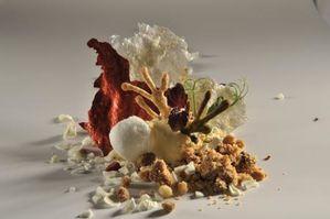 Iii les int r ts de la cuisine mol culaire l 39 avenir - Comment faire de la cuisine moleculaire ...