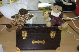 ours yoyo valise 1
