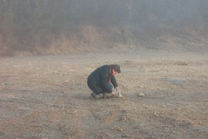 recherche coquilles dans le brouillard suite
